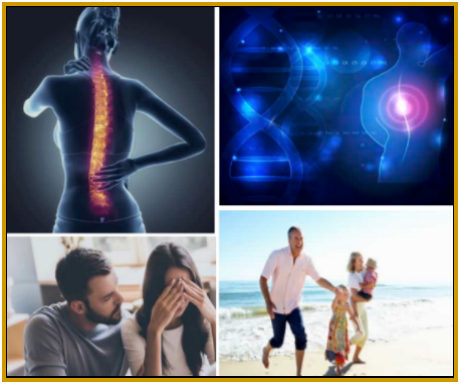 Back Pain Never More Review